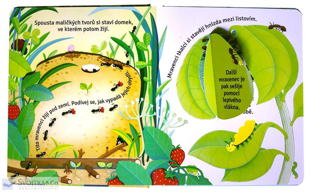 Obrázek Co se děje v hmyzích obydlích