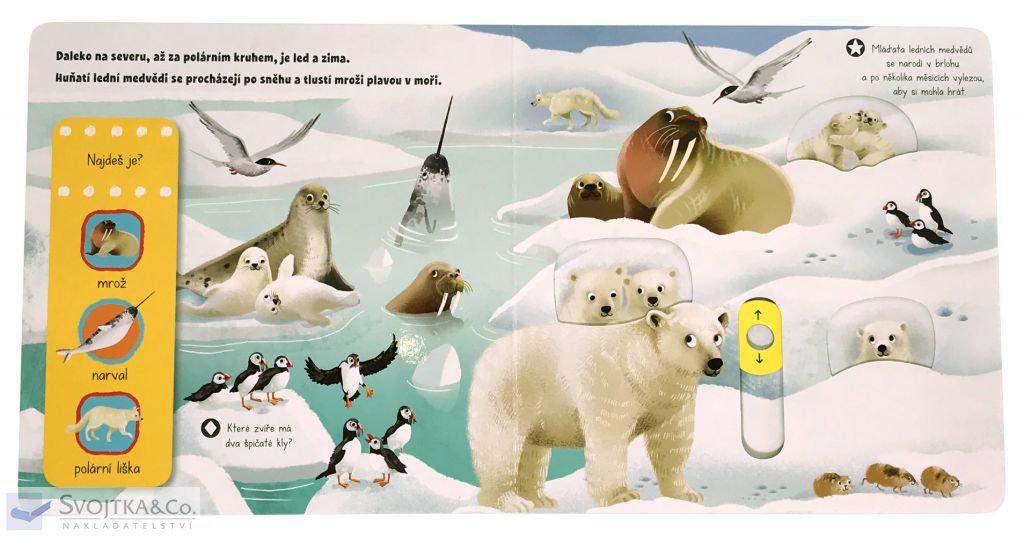 Obrázek PRVNÍ OBJEVY - Zvířata v zimě