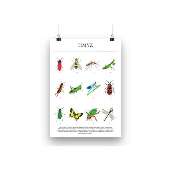 Obrázek Plakát Hmyz