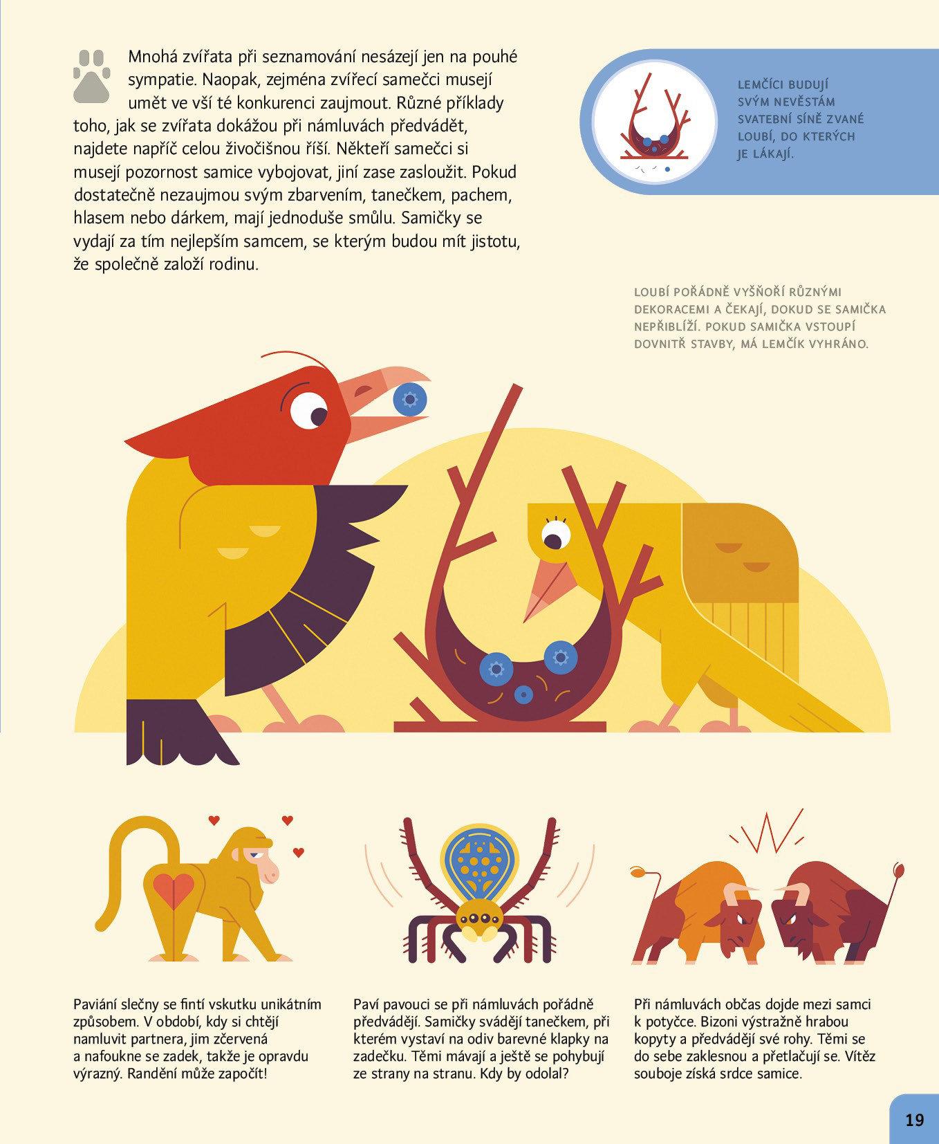 Obrázek Co mají společného zvířata a lidé