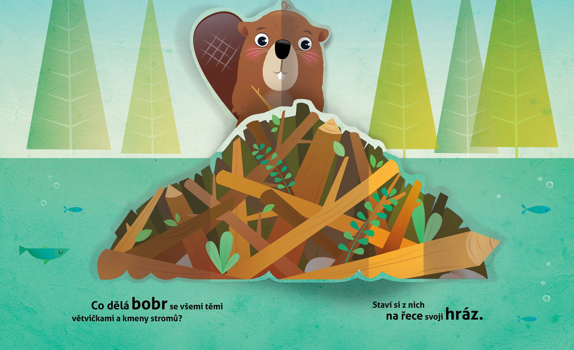 Obrázek Kde bydlí zvířátka v lese