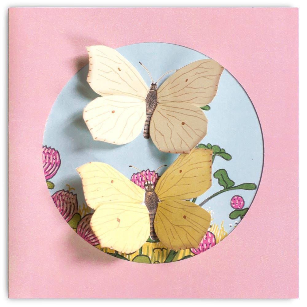Obrázek Moje sbírka motýlů