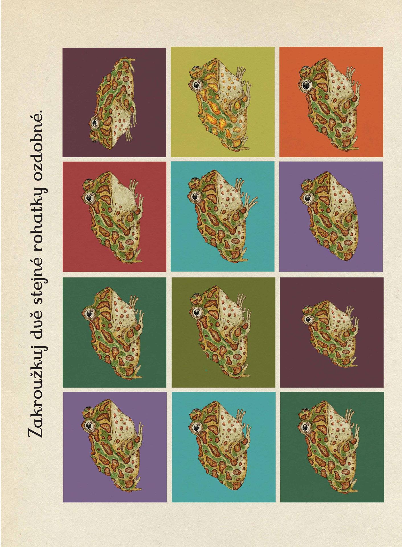Obrázek Animalium - kniha her