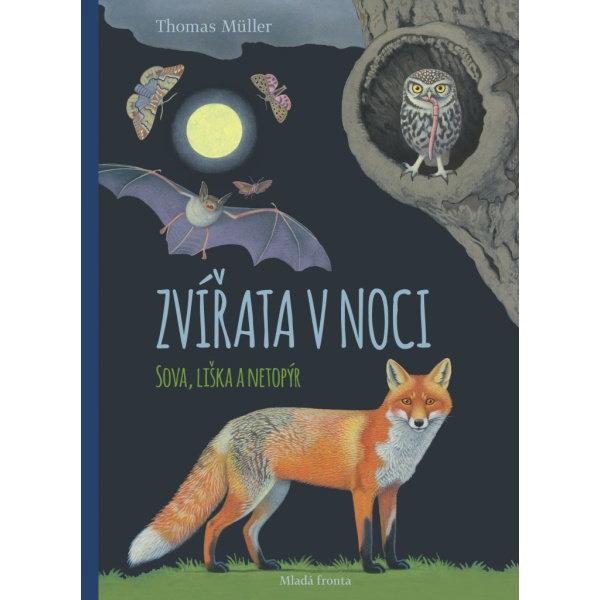 Obrázek  Zvířata v noci Sova, Liška a Netopýr