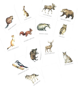 Obrázek Pexeso lesní zvířata