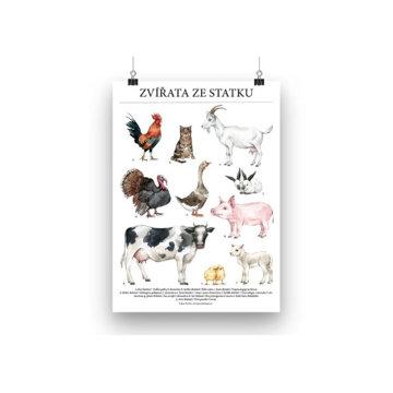 Obrázek Plakát zvířata ze statku